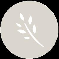 mkh-circle